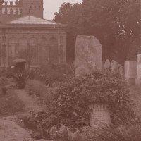Dolmen de la Ciutadella oculto