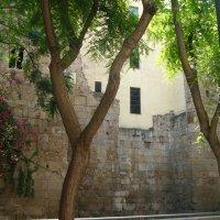 Fragmento de muralla en el carrer de la Palla